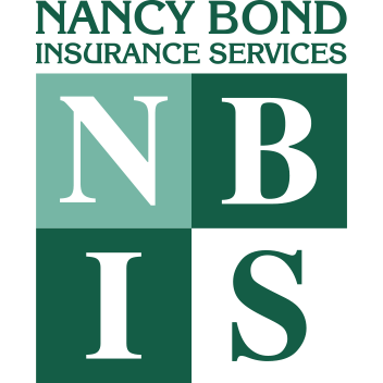 NBIS Logo - Square Graphic